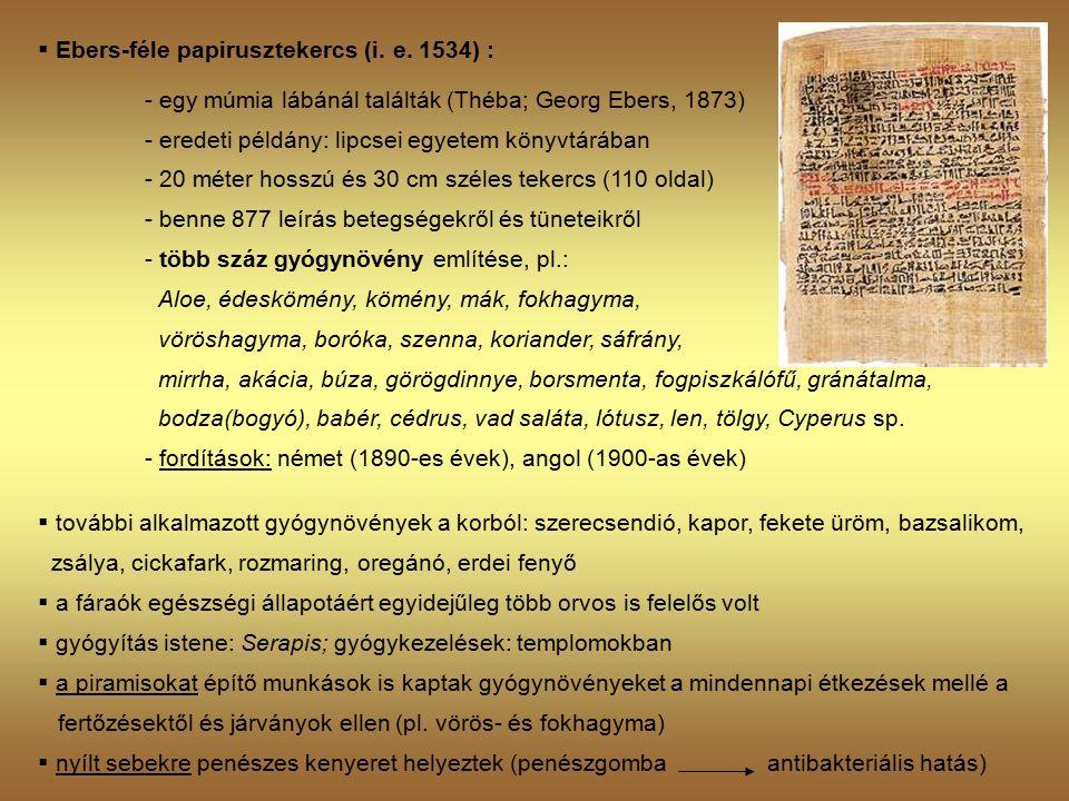  Ebers-féle papirusztekercs (i. e.