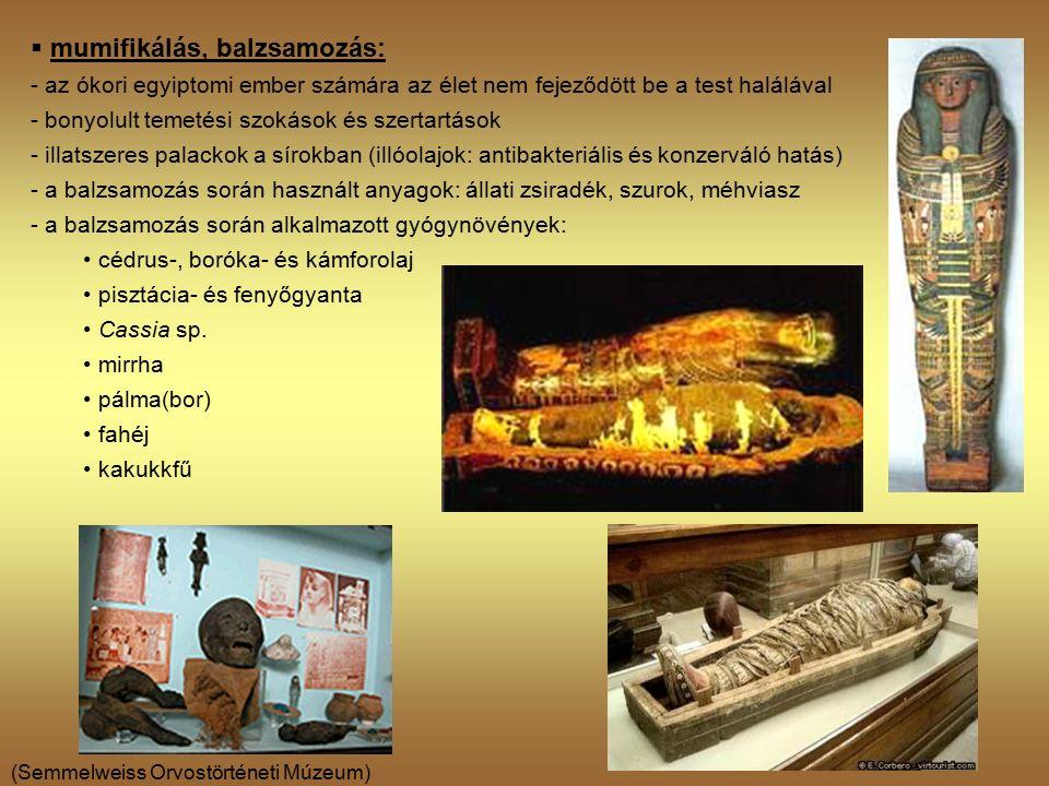 (Semmelweiss Orvostörténeti Múzeum)  mumifikálás, balzsamozás: - az ókori egyiptomi ember számára az élet nem fejeződött be a test halálával - bonyolult temetési szokások és szertartások - illatszeres palackok a sírokban (illóolajok: antibakteriális és konzerváló hatás) - a balzsamozás során használt anyagok: állati zsiradék, szurok, méhviasz - a balzsamozás során alkalmazott gyógynövények: cédrus-, boróka- és kámforolaj pisztácia- és fenyőgyanta Cassia sp.