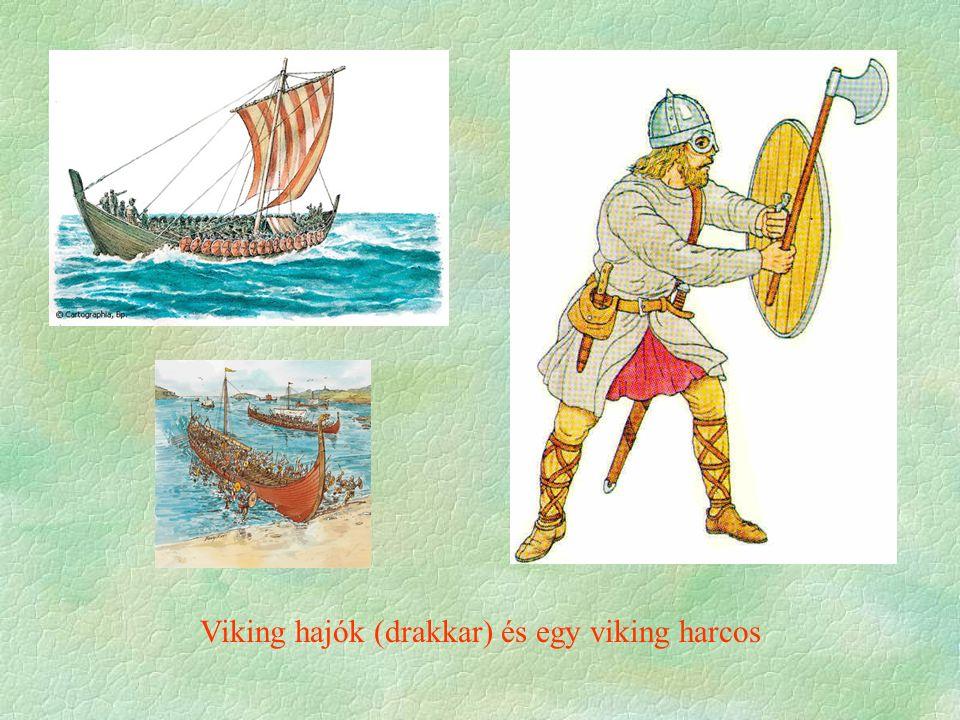 Viking hajók (drakkar) és egy viking harcos