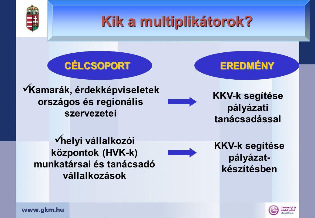 Kik a multiplikátorok? CÉLCSOPORTEREDMÉNY Kamarák, érdekképviseletek országos és regionális szervezetei helyi vállalkozói központok (HVK-k) munkatársa