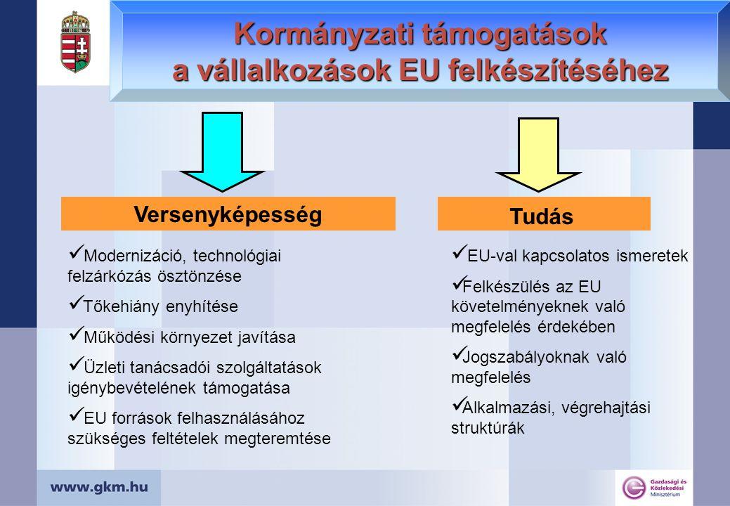 Kormányzati támogatások a vállalkozások EU felkészítéséhez Tudásbővítés Modernizáció, technológiai felzárkózás ösztönzése Tőkehiány enyhítése Működési környezet javítása Üzleti tanácsadói szolgáltatások igénybevételének támogatása EU források felhasználásához szükséges feltételek megteremtése EU-val kapcsolatos ismeretek Felkészülés az EU követelményeknek való megfelelés érdekében Jogszabályoknak való megfelelés Alkalmazási, végrehajtási struktúrák Versenyképesség Tudás