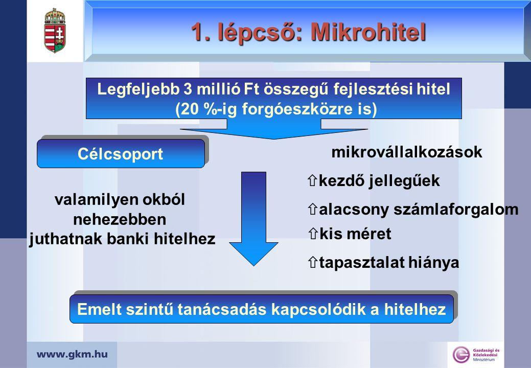 Vállalkozások pályázati felkészítése Multiplikátor Képzési Program multiplikátorok képzése (420-450 fő) KKV-k részére (kb.