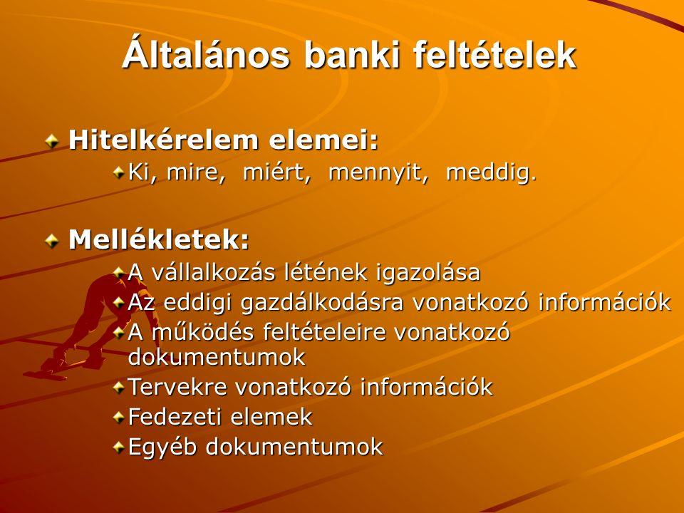 Általános banki feltételek Hitelkérelem elemei: Ki, mire, miért, mennyit, meddig. Mellékletek: A vállalkozás létének igazolása Az eddigi gazdálkodásra