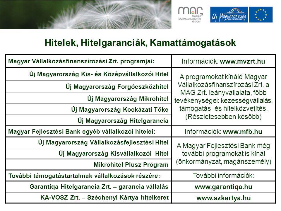 Hitelek, Hitelgaranciák, Kamattámogatások Magyar Vállalkozásfinanszírozási Zrt.