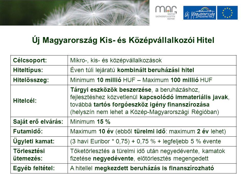 Új Magyarország Kis- és Középvállalkozói Hitel Célcsoport:Mikro-, kis- és középvállalkozások Hiteltípus:Éven túli lejáratú kombinált beruházási hitel Hitelösszeg:Minimum 10 millió HUF – Maximum 100 millió HUF Hitelcél: Tárgyi eszközök beszerzése, a beruházáshoz, fejlesztéshez közvetlenül kapcsolódó immateriális javak, továbbá tartós forgóeszköz igény finanszírozása (helyszín nem lehet a Közép-Magyarországi Régióban) Saját erő elvárás:Minimum 15 % Futamidő:Maximum 10 év (ebből türelmi idő: maximum 2 év lehet) Ügyleti kamat:(3 havi Euribor * 0,75) + 0,75 % + legfeljebb 5 % évente Törlesztési ütemezés: Tőketörlesztés a türelmi idő után negyedévente, kamatok fizetése negyedévente, előtörlesztés megengedett Egyéb feltétel:A hitellel megkezdett beruházás is finanszírozható