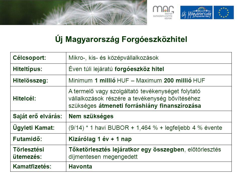 Új Magyarország Forgóeszközhitel Célcsoport:Mikro-, kis- és középvállalkozások Hiteltípus:Éven túli lejáratú forgóeszköz hitel Hitelösszeg:Minimum 1 millió HUF – Maximum 200 millió HUF Hitelcél: A termelő vagy szolgáltató tevékenységet folytató vállalkozások részére a tevékenység bővítéséhez szükséges átmeneti forráshiány finanszírozása Saját erő elvárás:Nem szükséges Ügyleti Kamat:(9/14) * 1 havi BUBOR + 1,464 % + legfeljebb 4 % évente Futamidő:Kizárólag 1 év + 1 nap Törlesztési ütemezés: Tőketörlesztés lejáratkor egy összegben, előtörlesztés díjmentesen megengedett Kamatfizetés:Havonta