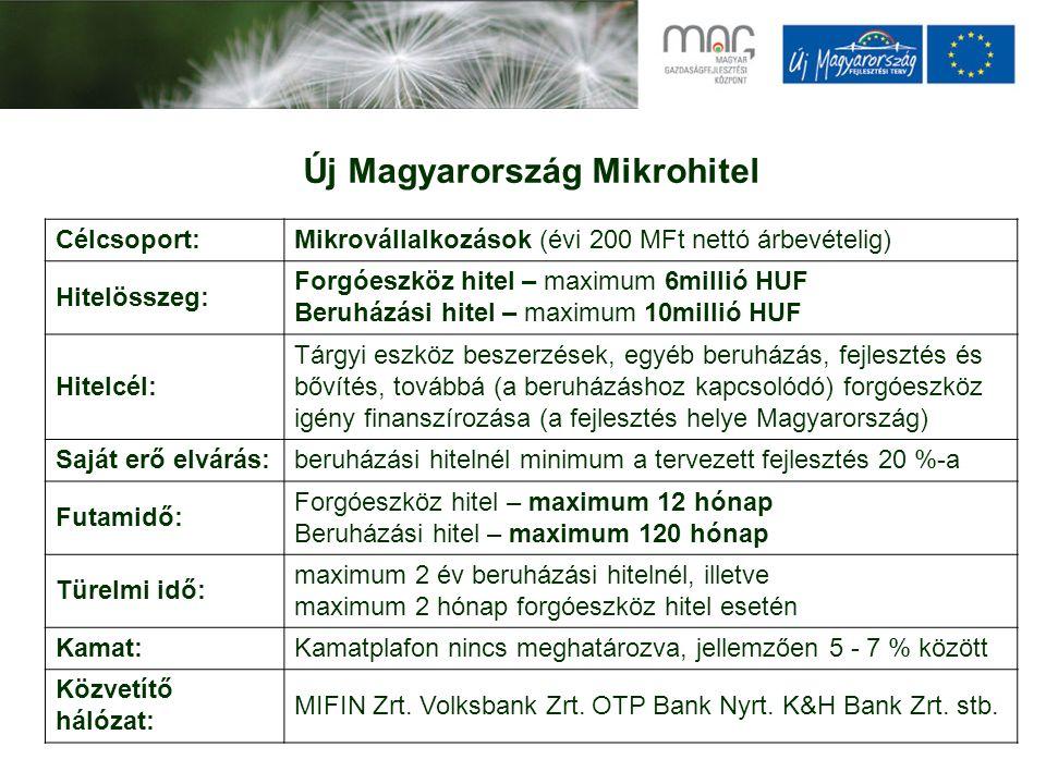 Új Magyarország Mikrohitel Célcsoport:Mikrovállalkozások (évi 200 MFt nettó árbevételig) Hitelösszeg: Forgóeszköz hitel – maximum 6millió HUF Beruházási hitel – maximum 10millió HUF Hitelcél: Tárgyi eszköz beszerzések, egyéb beruházás, fejlesztés és bővítés, továbbá (a beruházáshoz kapcsolódó) forgóeszköz igény finanszírozása (a fejlesztés helye Magyarország) Saját erő elvárás:beruházási hitelnél minimum a tervezett fejlesztés 20 %-a Futamidő: Forgóeszköz hitel – maximum 12 hónap Beruházási hitel – maximum 120 hónap Türelmi idő: maximum 2 év beruházási hitelnél, illetve maximum 2 hónap forgóeszköz hitel esetén Kamat:Kamatplafon nincs meghatározva, jellemzően 5 - 7 % között Közvetítő hálózat: MIFIN Zrt.