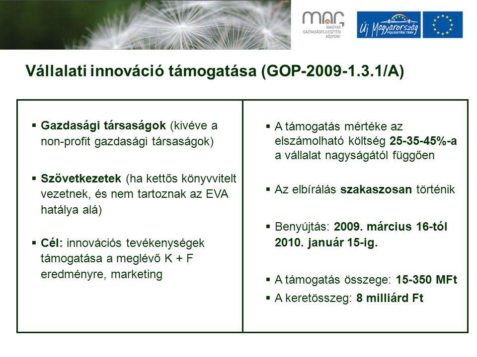 Vállalati innováció támogatása (GOP-2009-1.3.1/A)  Gazdasági társaságok (kivéve a non-profit gazdasági társaságok)  Szövetkezetek (ha kettős könyvvitelt vezetnek, és nem tartoznak az EVA hatálya alá)  Cél: innovációs tevékenységek támogatása a meglévő K + F eredményre, marketing  A támogatás mértéke az elszámolható költség 25-35-45%-a a vállalat nagyságától függően  Az elbírálás szakaszosan történik  Benyújtás: 2009.