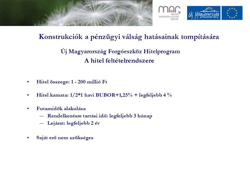 Konstrukciók a pénzügyi válság hatásainak tompítására Hitel összege: 1 - 200 millió Ft Hitel kamata: 1/2*1 havi BUBOR+1,25% + legfeljebb 4 % Futamidők alakulása ―Rendelkezésre tartási idő: legfeljebb 3 hónap ―Lejárat: legfeljebb 2 év Saját erő nem szükséges Új Magyarország Forgóeszköz Hitelprogram A hitel feltételrendszere