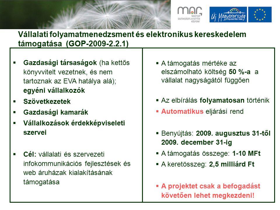 Vállalati folyamatmenedzsment és elektronikus kereskedelem támogatása (GOP-2009-2.2.1)  Gazdasági társaságok (ha kettős könyvvitelt vezetnek, és nem tartoznak az EVA hatálya alá); egyéni vállalkozók  Szövetkezetek  Gazdasági kamarák  Vállalkozások érdekképviseleti szervei  Cél: vállalati és szervezeti infokommunikációs fejlesztések és web áruházak kialakításának támogatása  A támogatás mértéke az elszámolható költség 50 %-a a vállalat nagyságától függően  Az elbírálás folyamatosan történik  Automatikus eljárási rend  Benyújtás: 2009.