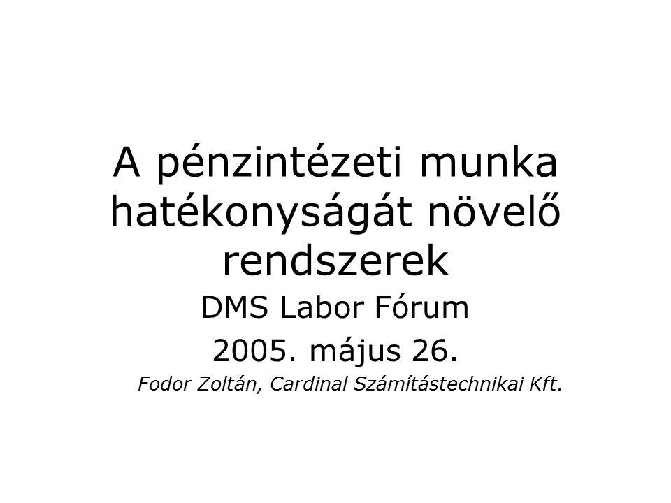 A pénzintézeti munka hatékonyságát növelő rendszerek DMS Labor Fórum 2005.