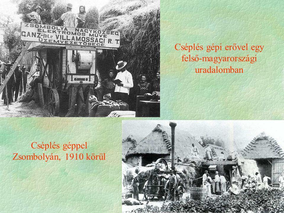 Cséplés géppel Zsombolyán, 1910 körül Cséplés gépi erővel egy felső-magyarországi uradalomban