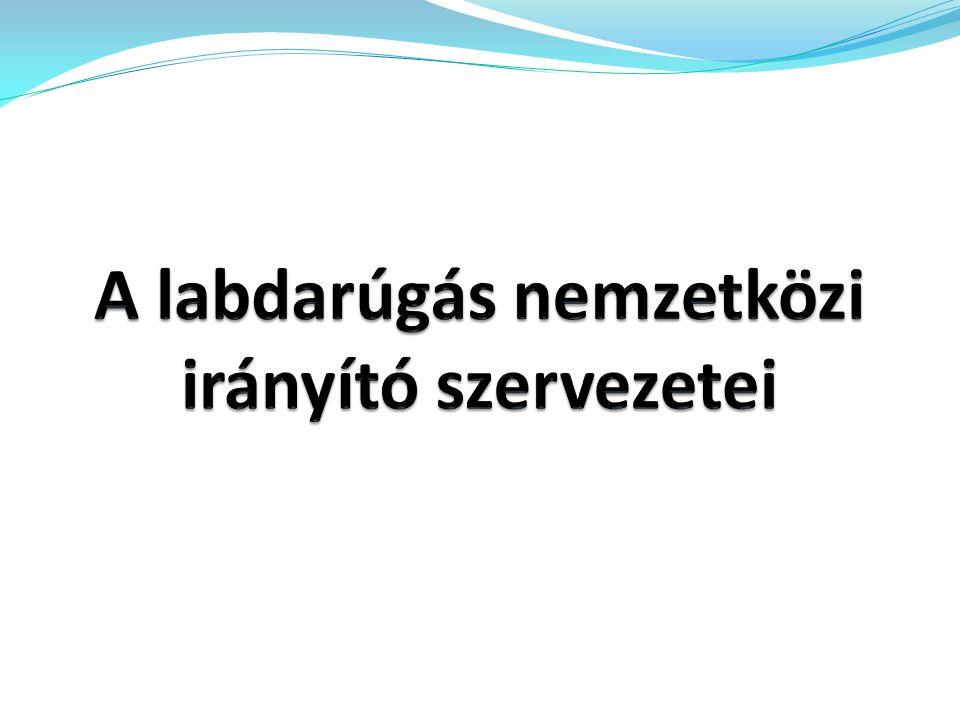 5.A Magyar Labdarúgó Szövetség működése (MLSZ) 1.