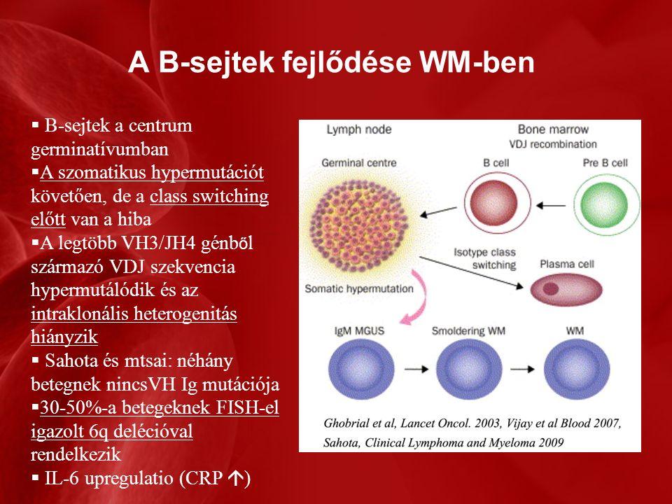 A B-sejtek fejlődése WM-ben  B-sejtek a centrum germinatívumban  A szomatikus hypermutációt követően, de a class switching előtt van a hiba  A legtöbb VH3/JH4 génb ő l származó VDJ szekvencia hypermutálódik és az intraklonális heterogenitás hiányzik  Sahota és mtsai: néhány betegnek nincsVH Ig mutációja  30-50%-a betegeknek FISH-el igazolt 6q delécióval rendelkezik  IL-6 upregulatio (CRP  )