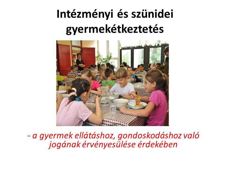 Intézményi és szünidei gyermekétkeztetés - a gyermek ellátáshoz, gondoskodáshoz való jogának érvényesülése érdekében