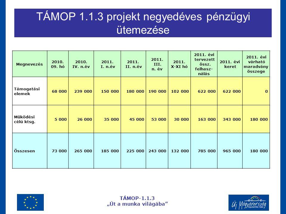 """TÁMOP 1.1.3 projekt negyedéves pénzügyi ütemezése TÁMOP-1.1.3 """"Út a munka világába Megnevezés 2010."""