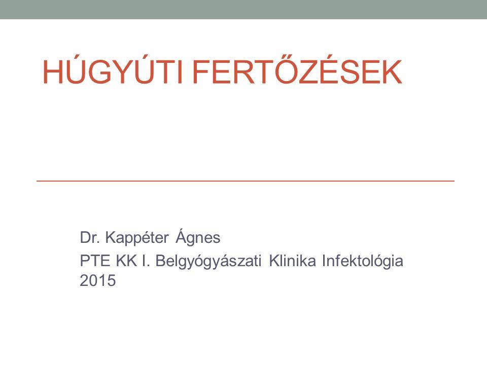 HÚGYÚTI FERTŐZÉSEK Dr. Kappéter Ágnes PTE KK I. Belgyógyászati Klinika Infektológia 2015