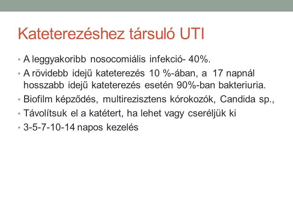 Kateterezéshez társuló UTI A leggyakoribb nosocomiális infekció- 40%.