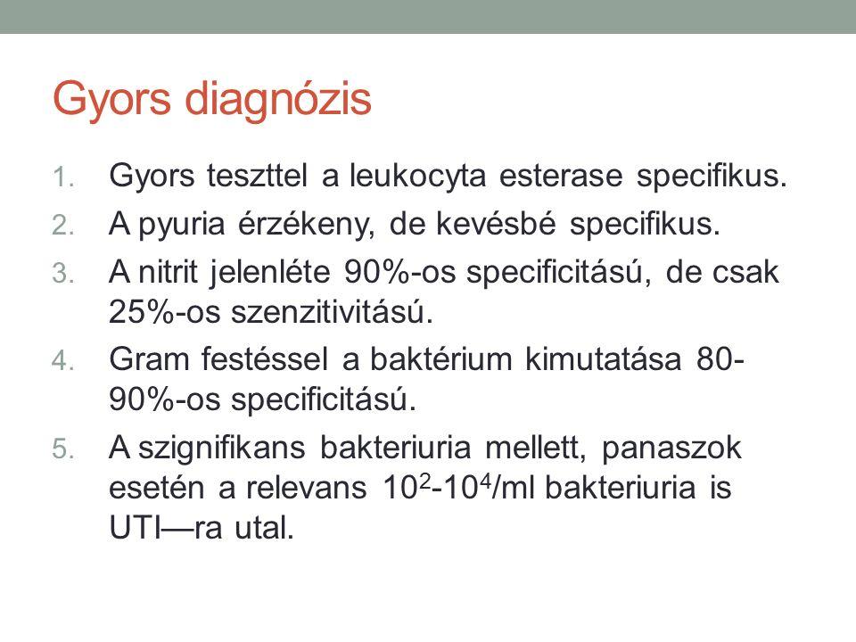 Gyors diagnózis 1. Gyors teszttel a leukocyta esterase specifikus.