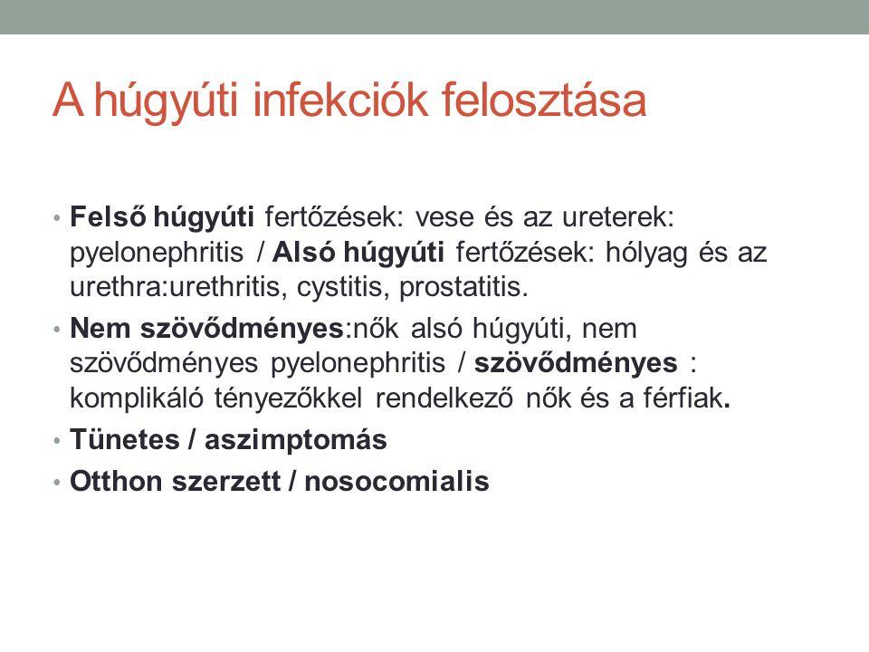 A húgyúti infekciók felosztása Felső húgyúti fertőzések: vese és az ureterek: pyelonephritis / Alsó húgyúti fertőzések: hólyag és az urethra:urethritis, cystitis, prostatitis.