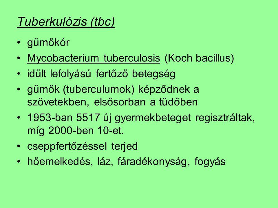 Tuberkulózis (tbc) gümőkór Mycobacterium tuberculosis (Koch bacillus) idült lefolyású fertőző betegség gümők (tuberculumok) képződnek a szövetekben, elsősorban a tüdőben 1953-ban 5517 új gyermekbeteget regisztráltak, míg 2000-ben 10-et.