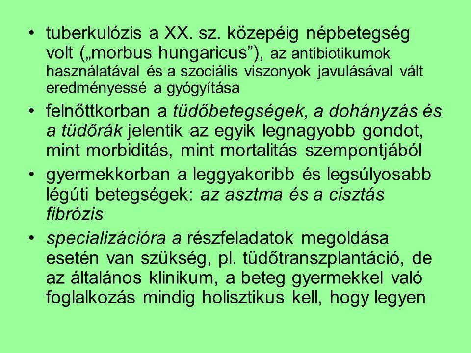 tuberkulózis a XX. sz.