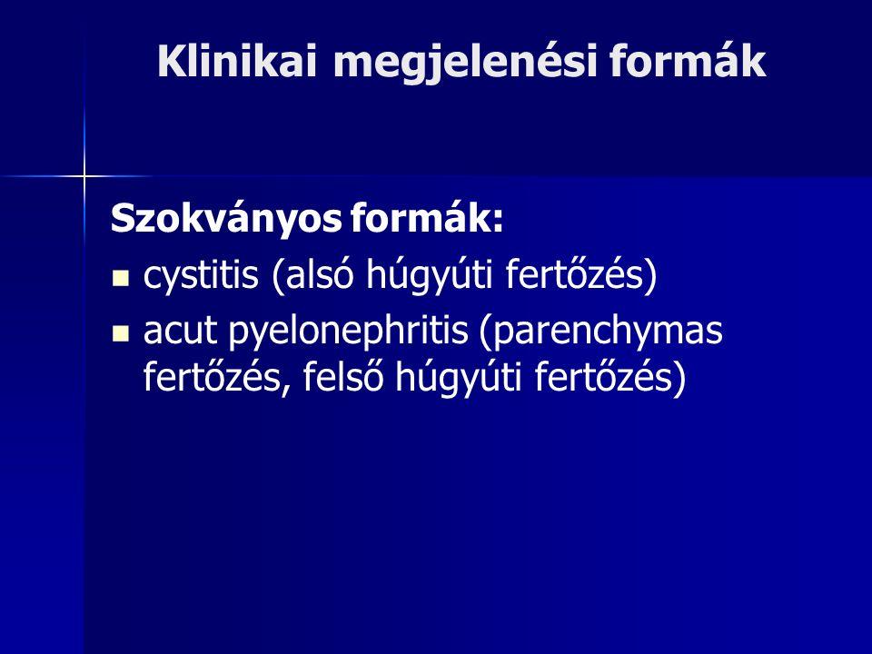 Klinikai megjelenési formák Szokványos formák: cystitis (alsó húgyúti fertőzés) acut pyelonephritis (parenchymas fertőzés, felső húgyúti fertőzés)