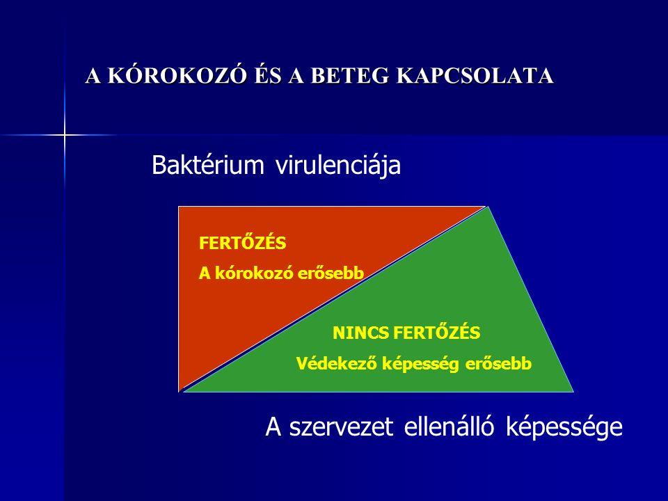 A KÓROKOZÓ ÉS A BETEG KAPCSOLATA Baktérium virulenciája A szervezet ellenálló képessége FERTŐZÉS A kórokozó erősebb NINCS FERTŐZÉS Védekező képesség erősebb
