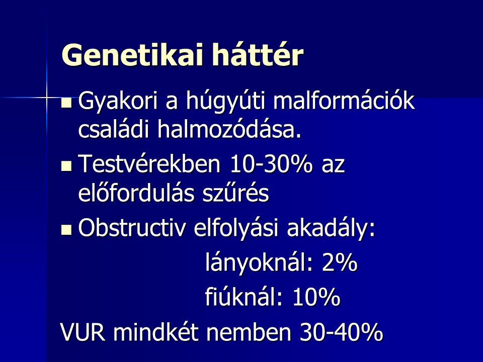 Genetikai háttér Gyakori a húgyúti malformációk családi halmozódása.