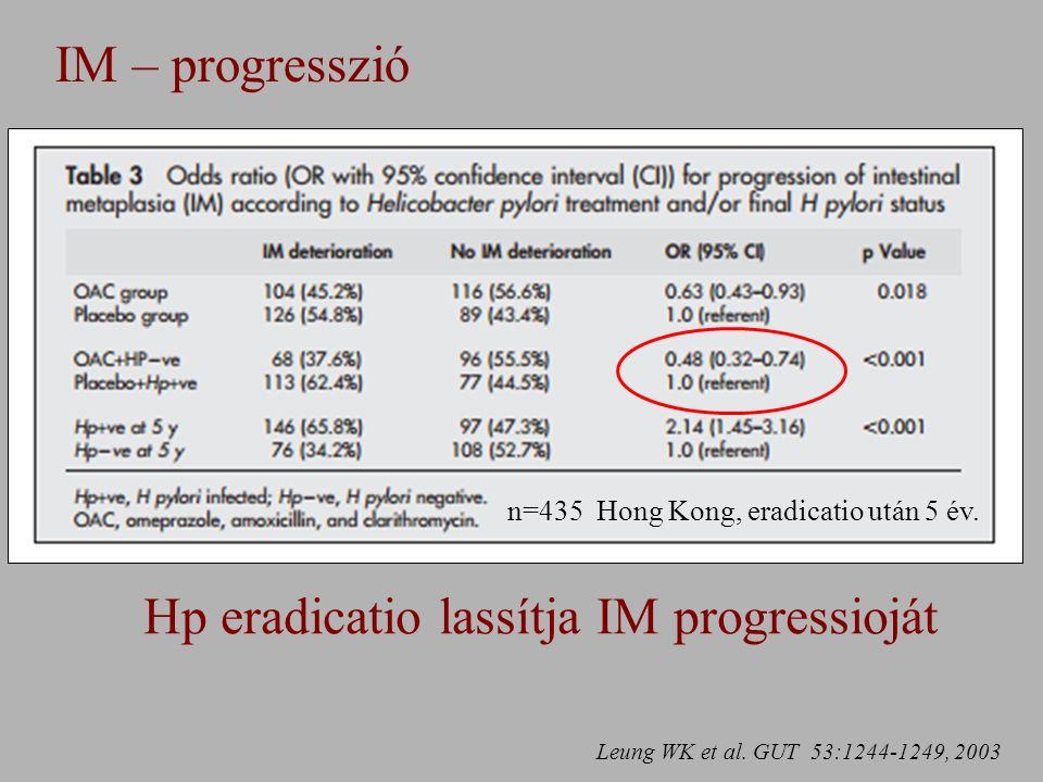 IM – progresszió Leung WK et al.