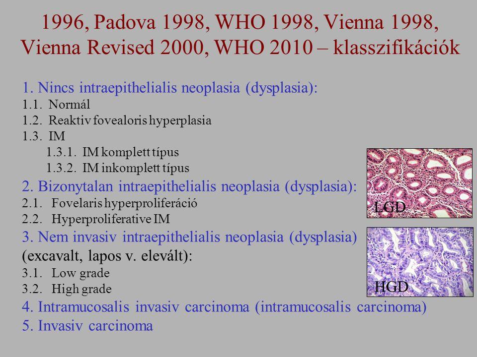 1. Nincs intraepithelialis neoplasia (dysplasia): 1.1. Normál 1.2. Reaktiv fovealoris hyperplasia 1.3. IM 1.3.1. IM komplett típus 1.3.2. IM inkomplet
