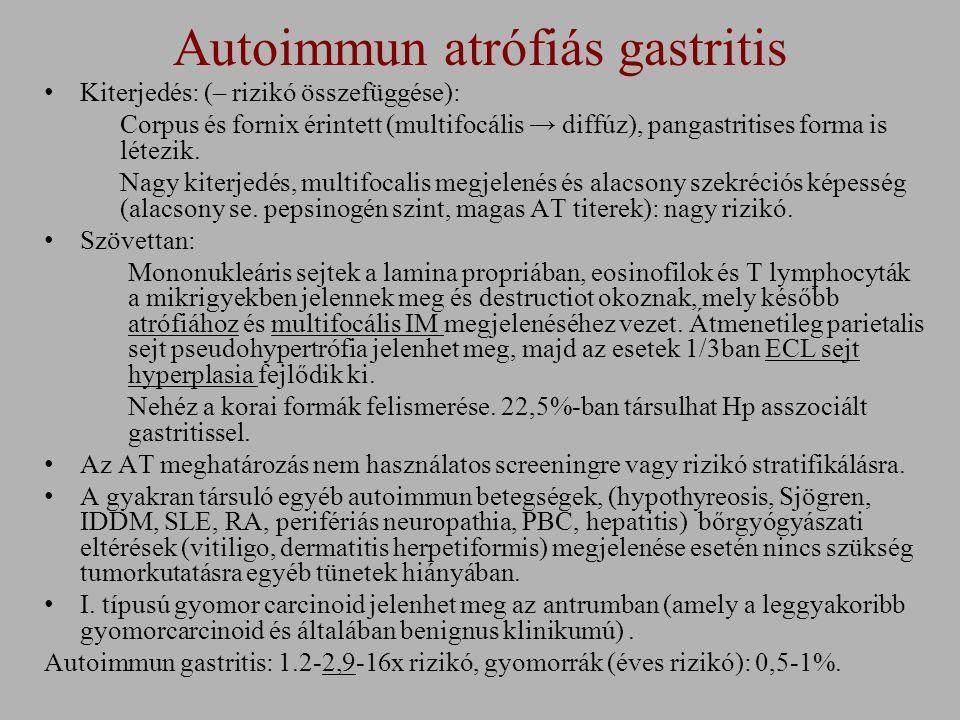 Autoimmun atrófiás gastritis Kiterjedés: (– rizikó összefüggése): Corpus és fornix érintett (multifocális → diffúz), pangastritises forma is létezik.