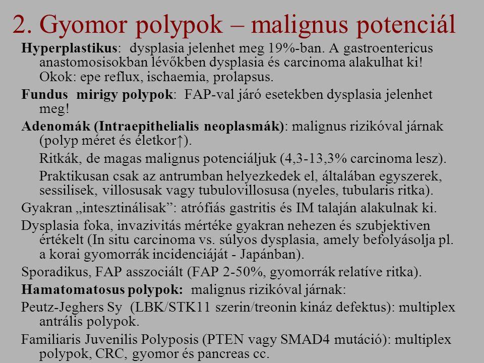 2.Gyomor polypok – malignus potenciál Hyperplastikus: dysplasia jelenhet meg 19%-ban.