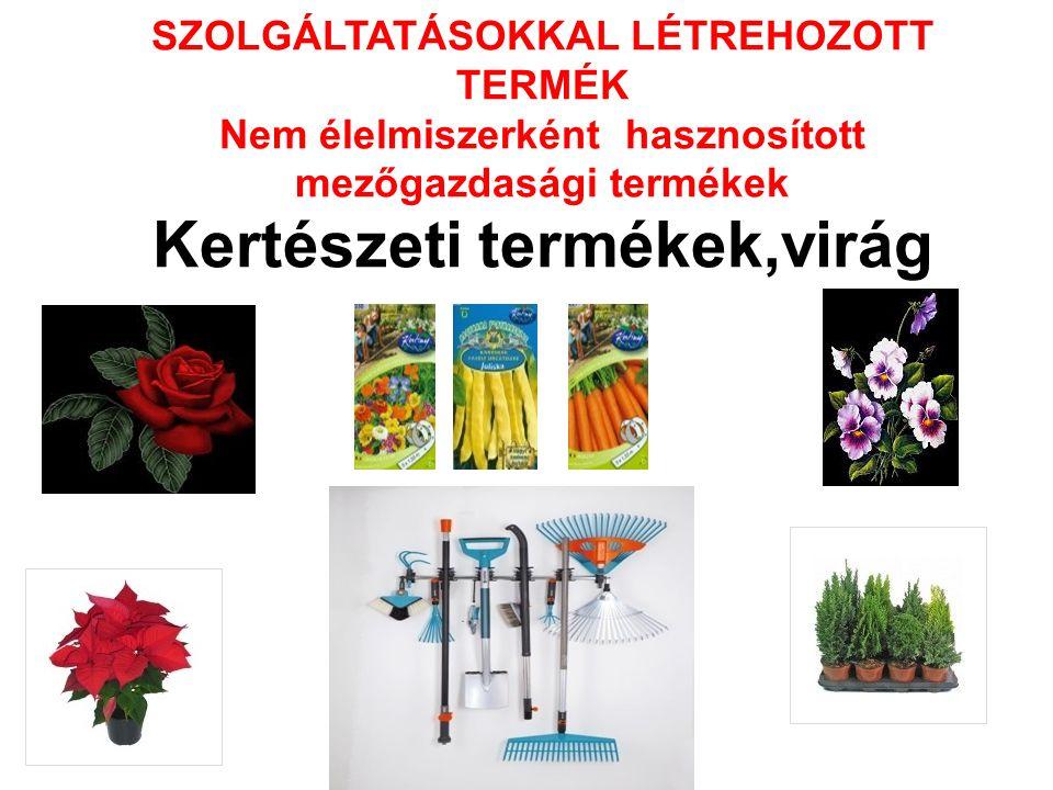 SZOLGÁLTATÁSOKKAL LÉTREHOZOTT TERMÉK Nem élelmiszerként hasznosított mezőgazdasági termékek Kertészeti termékek,virág