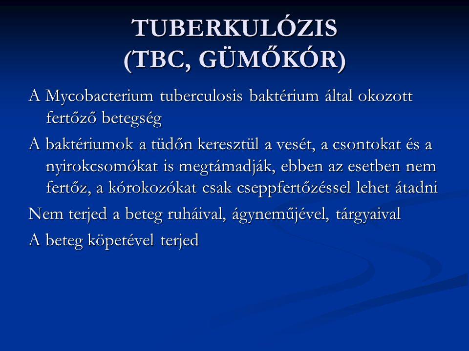 TUBERKULÓZIS (TBC, GÜMŐKÓR) A Mycobacterium tuberculosis baktérium által okozott fertőző betegség A baktériumok a tüdőn keresztül a vesét, a csontokat és a nyirokcsomókat is megtámadják, ebben az esetben nem fertőz, a kórokozókat csak cseppfertőzéssel lehet átadni Nem terjed a beteg ruháival, ágyneműjével, tárgyaival A beteg köpetével terjed