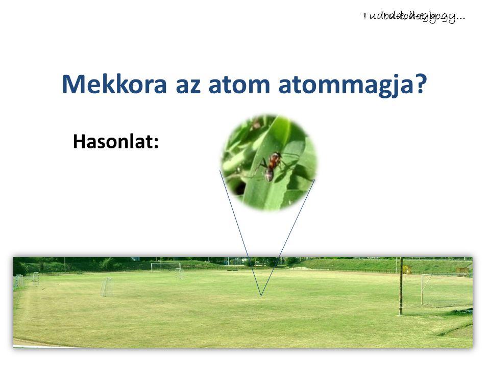 Mekkora az atom atommagja Tudod-e, hogy… Hasonlat: Tudod-e, hogy…