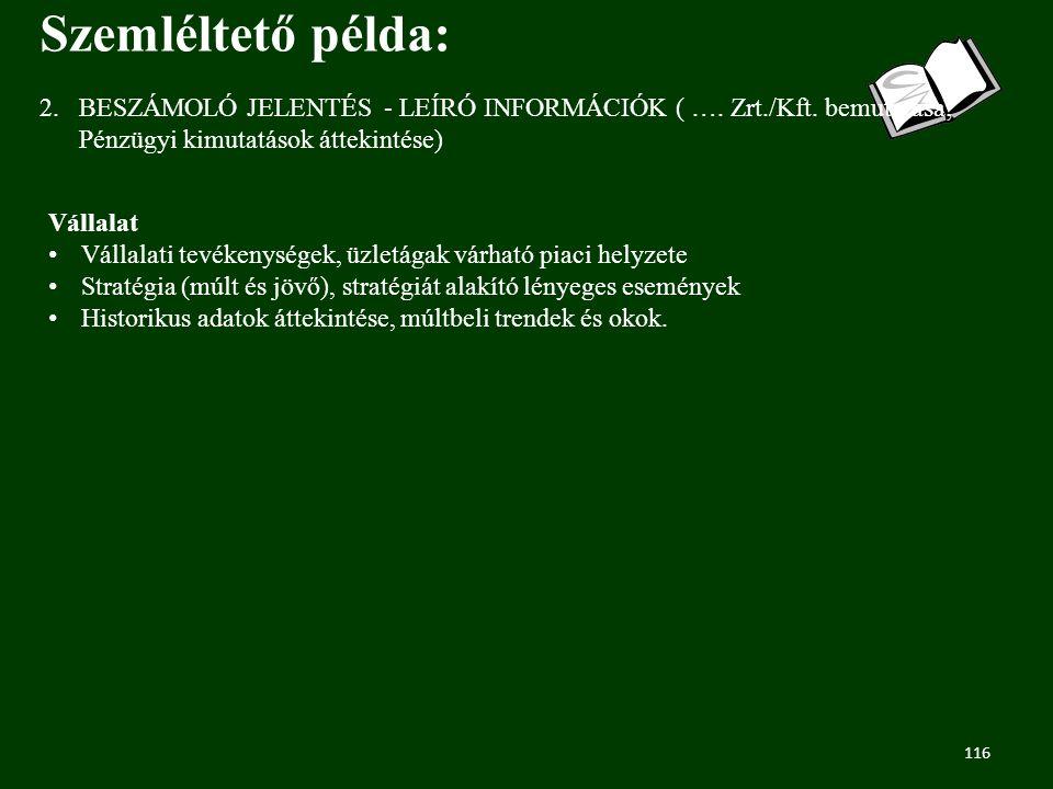116 2.BESZÁMOLÓ JELENTÉS - LEÍRÓ INFORMÁCIÓK ( ….Zrt./Kft.