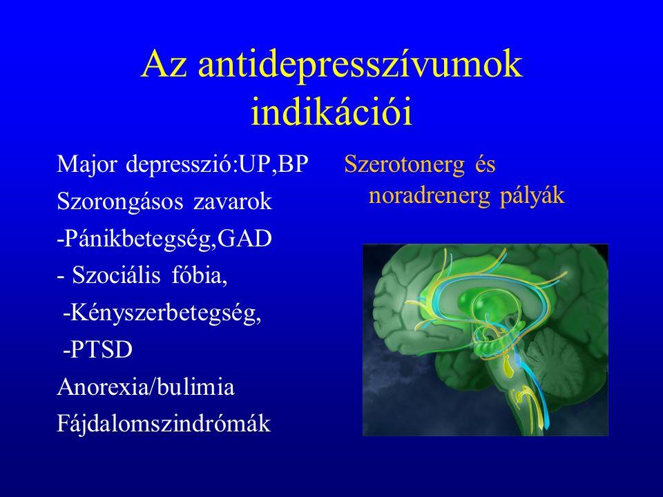 Az antidepresszívumok indikációi Major depresszió:UP,BP Szorongásos zavarok -Pánikbetegség,GAD - Szociális fóbia, -Kényszerbetegség, -PTSD Anorexia/bulimia Fájdalomszindrómák Szerotonerg és noradrenerg pályák