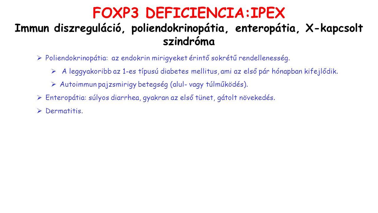 FOXP3 DEFICIENCIA:IPEX Immun diszreguláció, poliendokrinopátia, enteropátia, X-kapcsolt szindróma  Poliendokrinopátia: az endokrin mirigyeket érintő sokrétű rendellenesség.