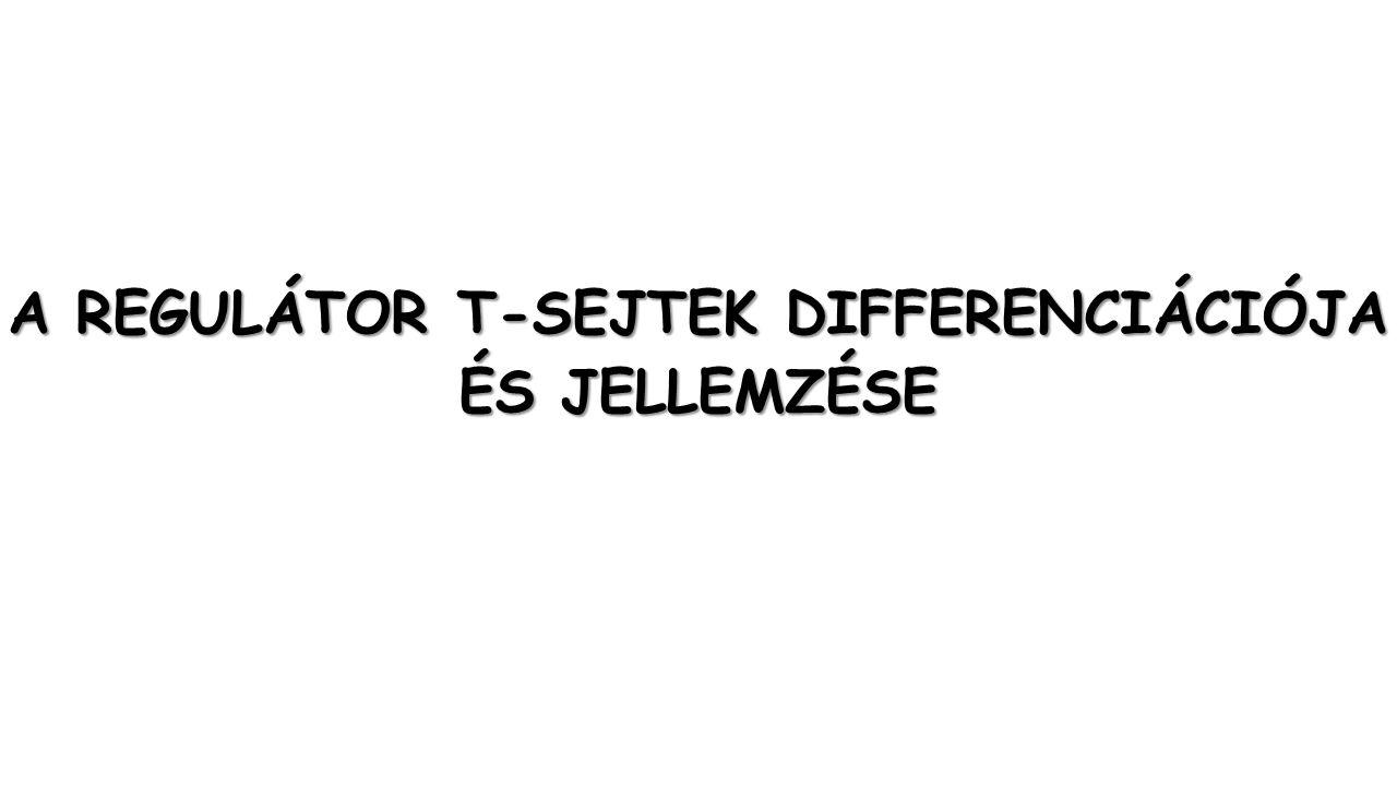 A REGULÁTOR T-SEJTEK DIFFERENCIÁCIÓJA ÉS JELLEMZÉSE