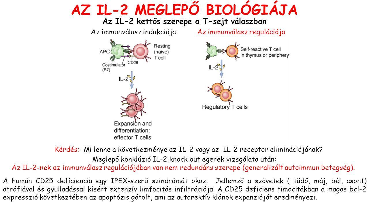 Az IL-2 kettős szerepe a T-sejt válaszban Az immunválasz indukciójaAz immunválasz regulációja Kérdés: Mi lenne a következménye az IL-2 vagy az IL-2 receptor eliminációjának.