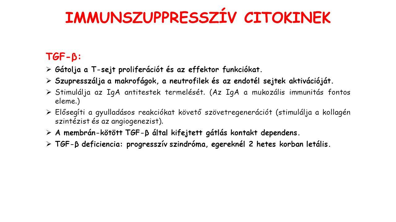 IMMUNSZUPPRESSZÍV CITOKINEK TGF-β: GGátolja a T-sejt proliferációt és az effektor funkciókat.