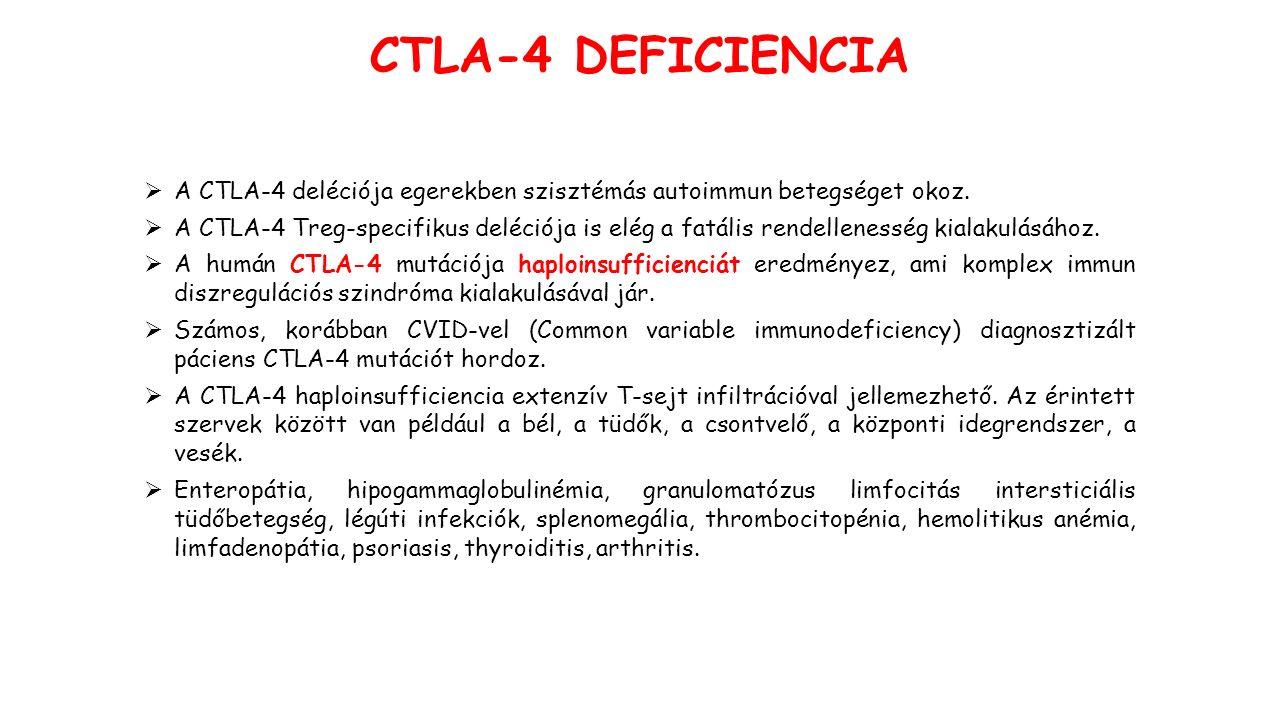 CTLA-4 DEFICIENCIA  A CTLA-4 deléciója egerekben szisztémás autoimmun betegséget okoz.