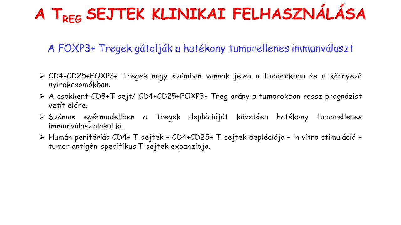 A FOXP3+ Tregek gátolják a hatékony tumorellenes immunválaszt  CD4+CD25+FOXP3+ Tregek nagy számban vannak jelen a tumorokban és a környező nyirokcsomókban.