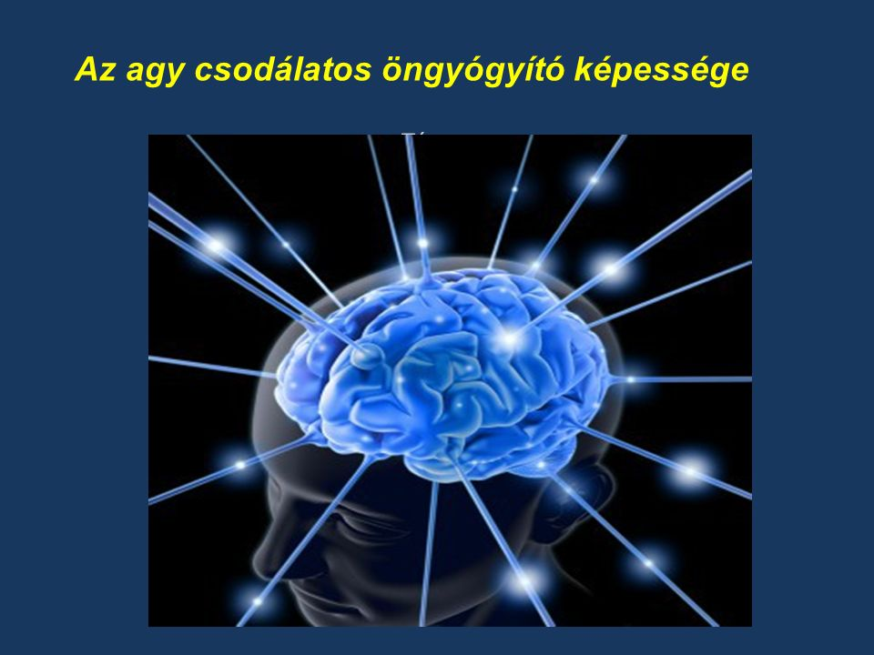 Téma Az agy csodálatos öngyógyító képessége