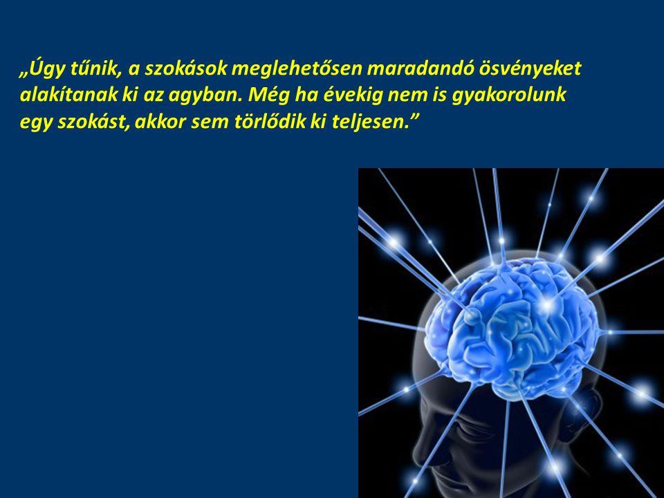 """""""Úgy tűnik, a szokások meglehetősen maradandó ösvényeket alakítanak ki az agyban. Még ha évekig nem is gyakorolunk egy szokást, akkor sem törlődik ki"""