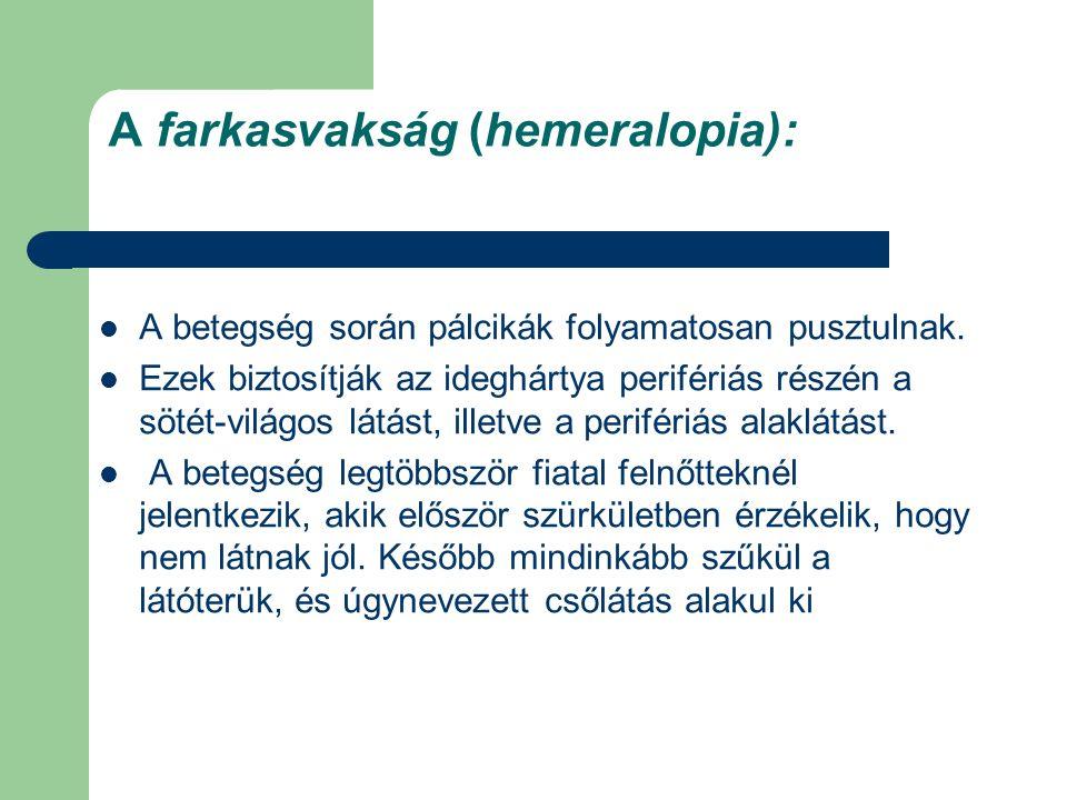 A farkasvakság (hemeralopia): A betegség során pálcikák folyamatosan pusztulnak. Ezek biztosítják az ideghártya perifériás részén a sötét-világos látá