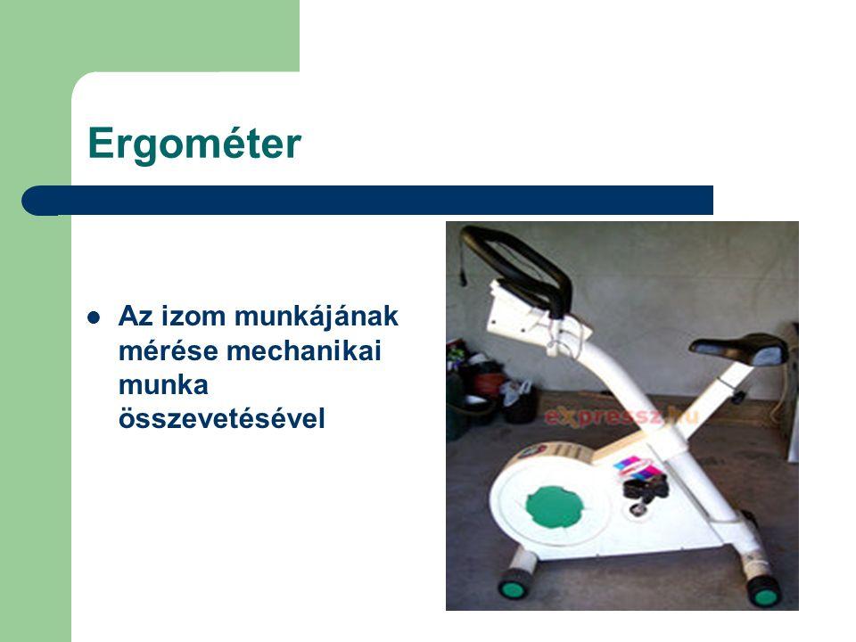 Ergométer Az izom munkájának mérése mechanikai munka összevetésével