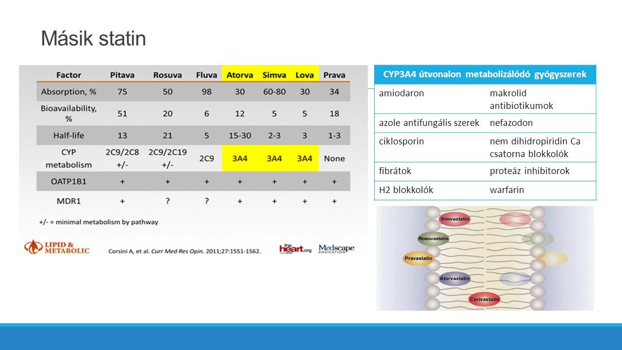 Másik statin CYP3A4 útvonalon metabolizálódó gyógyszerek amiodaronmakrolid antibiotikumok azole antifungális szereknefazodon ciklosporinnem dihidropiridin Ca csatorna blokkolók fibrátokproteáz inhibitorok H2 blokkolókwarfarin