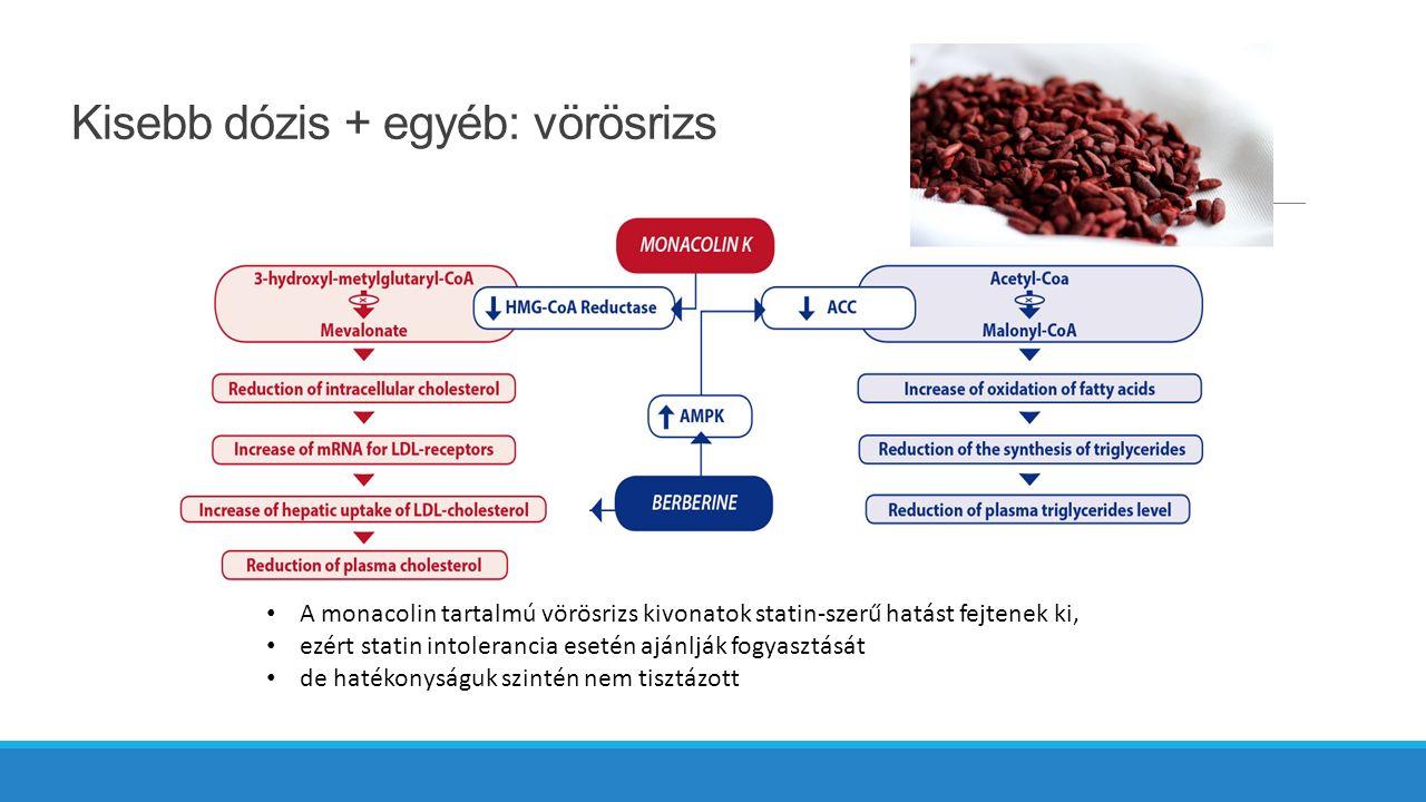 Kisebb dózis + egyéb: vörösrizs A monacolin tartalmú vörösrizs kivonatok statin-szerű hatást fejtenek ki, ezért statin intolerancia esetén ajánlják fogyasztását de hatékonyságuk szintén nem tisztázott